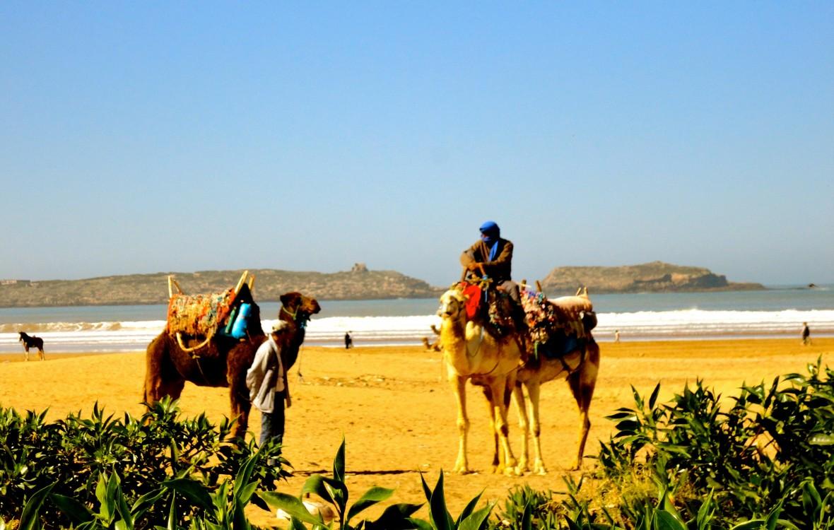 Frans leren in Marokko
